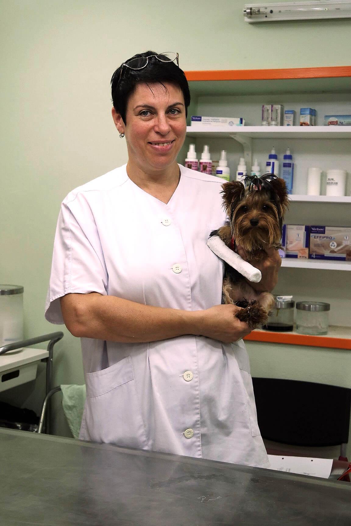 ветеринарный доктор кемерово